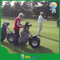 Buy cheap 2015 New Golf Scooter, Golf buggy, Golf Cart, Golf Car, Two Wheel Self Balancing Personal Transporter product