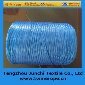 China high tenacity pp multifilament yarn on sale