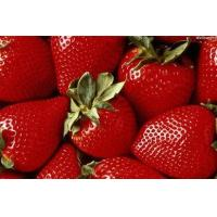 Buy cheap Agricultural Products Strawberry product