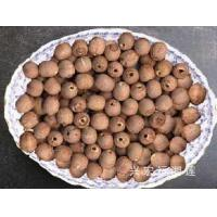 how to cook fresh lotus seeds