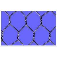 Buy cheap Hexagonal Wire Netting Hexagonal Wire Netting product