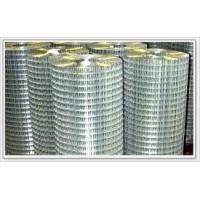 Buy cheap Welded Wire Mesh product