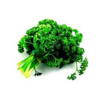 how to make parsley essential oil