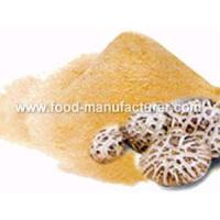 Buy cheap Freeze Dried Mushroom Freeze Dried Shiitake Powder product
