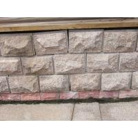 Buy cheap Other Paving Stone mushroom from Wholesalers