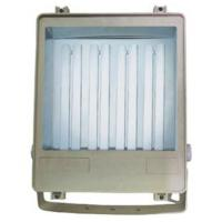 Buy cheap Big power Energy saving flood light TLX9212E product