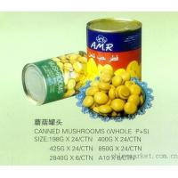 Buy cheap canned mushroom product