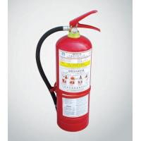 Portable Dry Power Fire Extinguisher