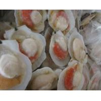 Buy cheap FrozenScallop product