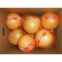 Buy cheap red Pummelo,Pummelo,red Pummelo fruit,red Pummelo fresh product