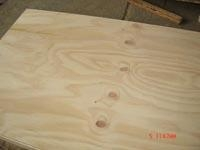 Quality Three-layer shuttering panel Pine plywood for sale