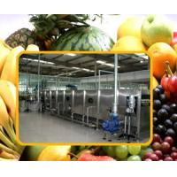 Fruit Juice Processing Line