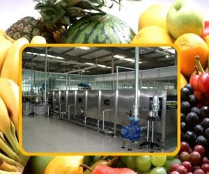 Quality Fruit Juice Processing Line for sale