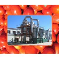 Buy cheap Mango / Tomato Paste Production Line product
