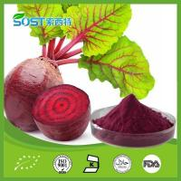 Buy cheap Vegetable Powder Beet Powder product