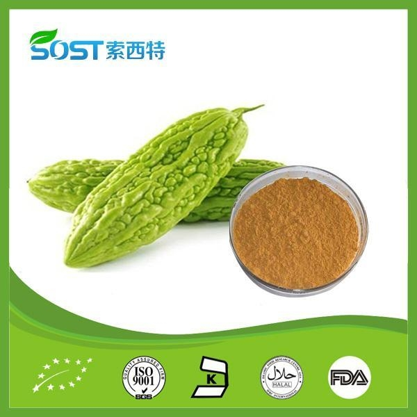 weight loss melon extract