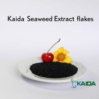 Buy cheap Natural Super Quality Sea Kelp Source Dried Seaweed Extract Products product