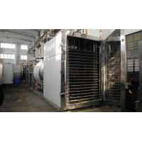 China Freeze Drying Machine (Dryer for Active Pharmaceutical Ingredients) on sale