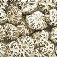 Buy cheap Dried Chinese Cultivated Tea Flower Lentinus Edode Packed in customized bag product