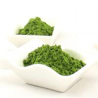 Buy cheap Herbal Extract Wheatgrass Juice product