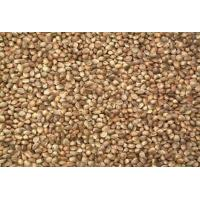 Buy cheap Seed Unshelled Hemp Seed product