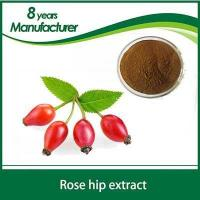 Rose hip powder OEM Packaging Cosmetic Grade Rose Hip Seed Oil for Skin Treatment