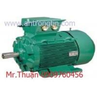 Buy cheap Motor Leroysomer- EMERSON from wholesalers