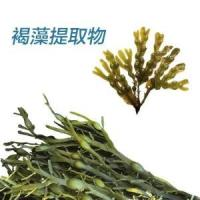 Buy cheap Brown seaweed extract product
