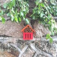 Buy cheap Ladybird box and bee house from wholesalers
