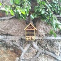 Buy cheap Four tier bee hotel from wholesalers