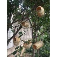 Buy cheap Bamboo bird nest and house---set of 5 from wholesalers