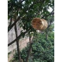 Buy cheap Woven bamboo bird house from wholesalers