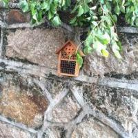 Buy cheap insect hotel,bee habitat,birdbox,bird pouch from wholesalers