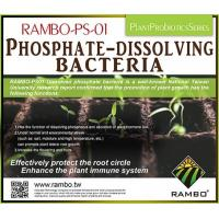 Fertilizer RAMBO-PS01 Phosphate-dissolving bacteria