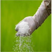 Agriculture Fertilizers - Global Market Outlook (2015-2022)
