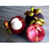 Buy cheap mangosteen powder product