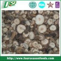Hot Sale All types Of Mushrooms