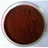 Buy cheap Pine Bark Extract product