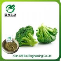 Buy cheap Broccoli Powder, China Supplier Organic Broccoli Powder, High Quality Broccoli Seed Extract product