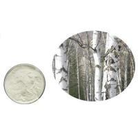 Buy cheap Betulin 98% Birch bark CAS NO. 473-98-3 product