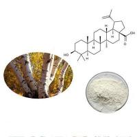 Buy cheap GMP Manufacturing White Birch Bark Extract product
