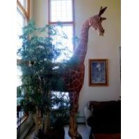 Buy cheap 12' Giraffe Sculpture used for sale product