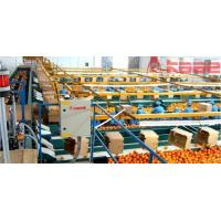 Buy cheap Whole Set Processing Line Photoelectrical Fruit And Vegetable Grading System product