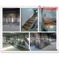 Turnkey Project Industrial Peach/apricot/plum Pulp Jam Puree Processing Line