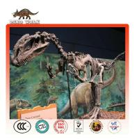 Buy cheap Amusement Park Dig Dinosaur Fossil Games for kids product