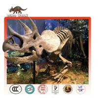Buy cheap Triceratops Fossil Replica Theme park equipment for sale product
