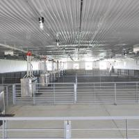 Pig and Hog Barns Farming House Construction Steel Buildings