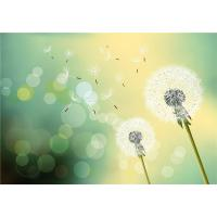 Mold Resistant Faux Stone Interior Wall Panels Dreamy Dandelion In Midsummer