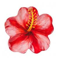 """Buy cheap 14"""" Red Hibiscus Melamine Platter from Wholesalers"""