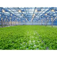 Buy cheap Easily Assembled Agricultural Greenhouse product